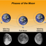 Phases of the Moon, as seen from the Northern Hemisphere. The Southern hemisphere will see a mirror image of this phase. (Source:Wikipedia)