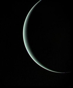 A picture of Uranus taken by Voyager 2 as it headed to Neptune (Source:Wikipedia)