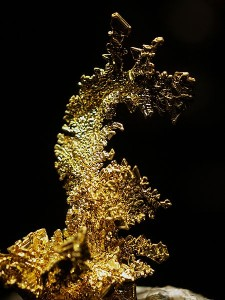 "Gold on Quartz ""The Dragon"" (Wikimedia Commons)"