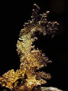 "Gold on Quartz ""The Dragon"" (Wikimedia Commons)"